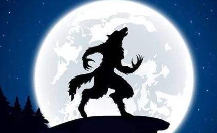 狼人杀狼牌怎么玩 狼人杀新人摸狼牌攻略