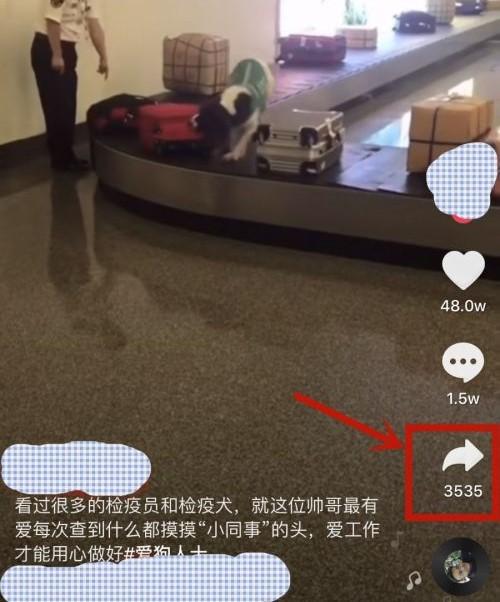 抖音视频怎么去水印 关于抖音视频去水印的办法