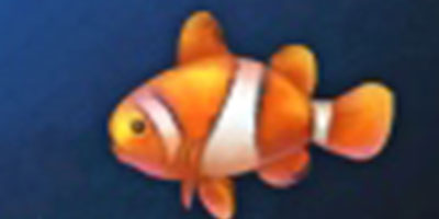 妄想山海海葵鱼如何抓 妄想山海海葵鱼用途